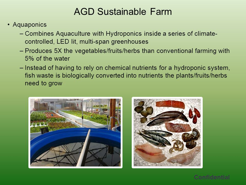 AGD Sustainable Farm Aquaponics