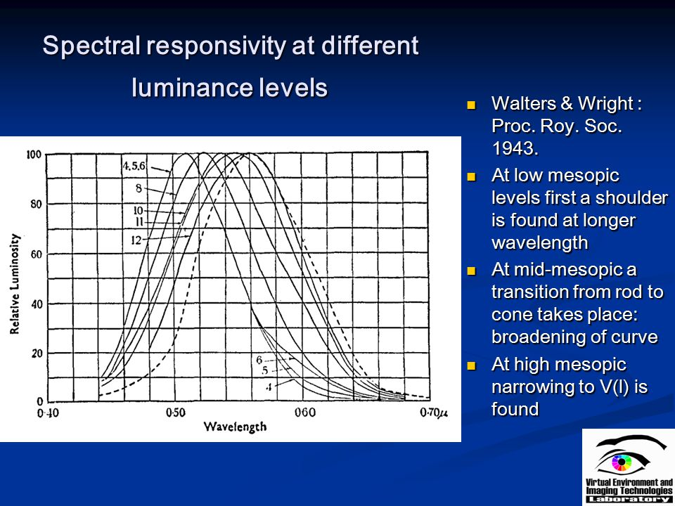 Spectral responsivity at different luminance levels