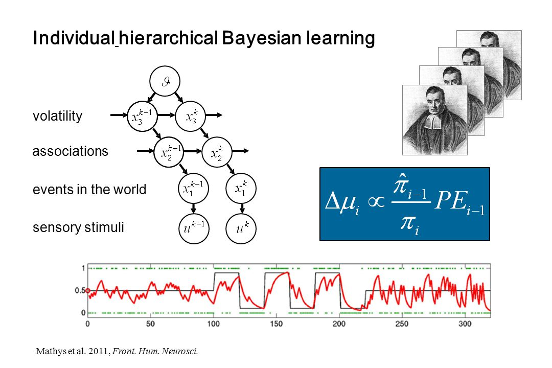 Individual hierarchical Bayesian learning