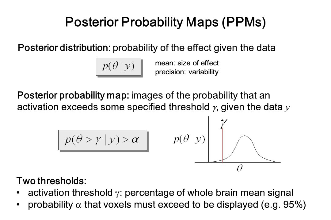 Posterior Probability Maps (PPMs)