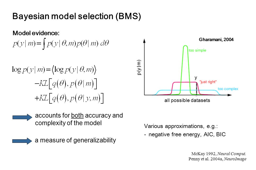 Bayesian model selection (BMS)