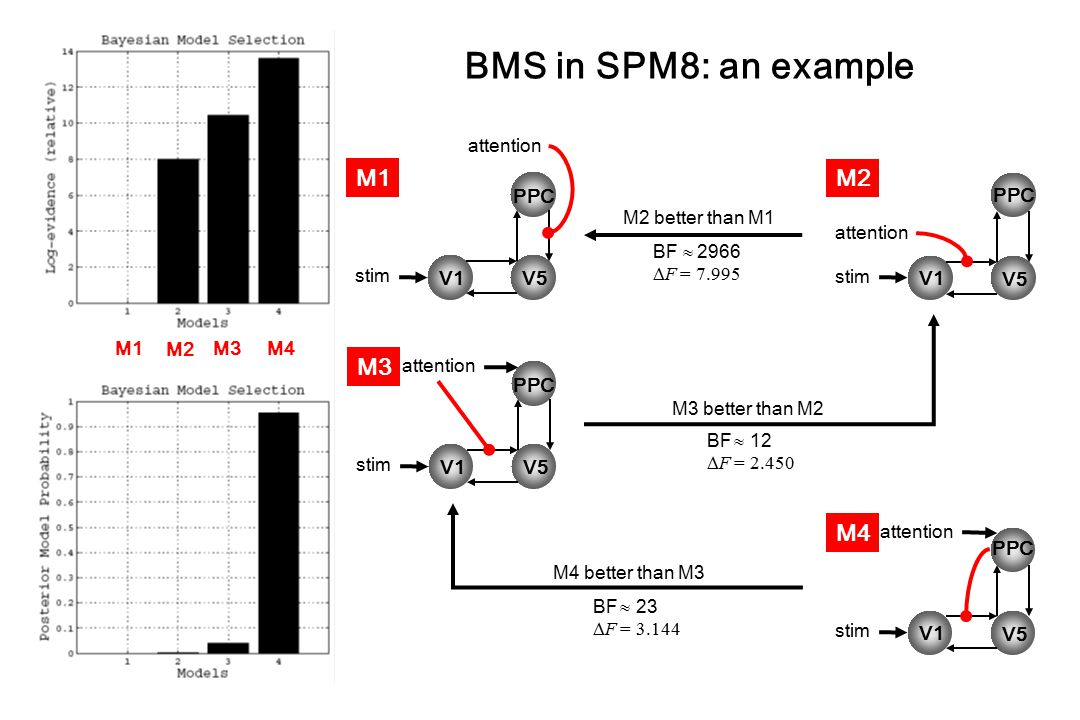 BMS in SPM8: an example M1 M2 M3 M4 attention PPC PPC BF 2966