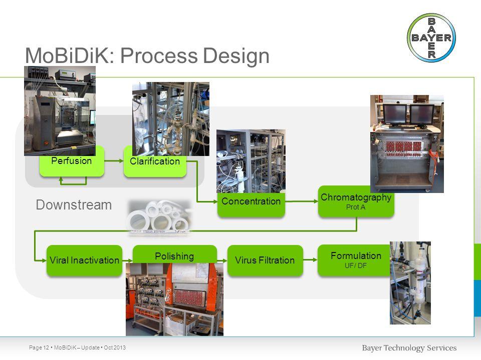 MoBiDiK: Process Design