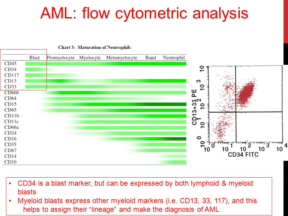 AML: flow cytometric analysis