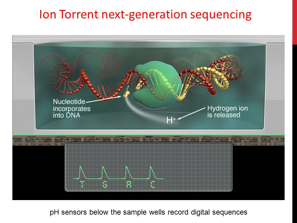 Ion Torrent next-generation sequencing
