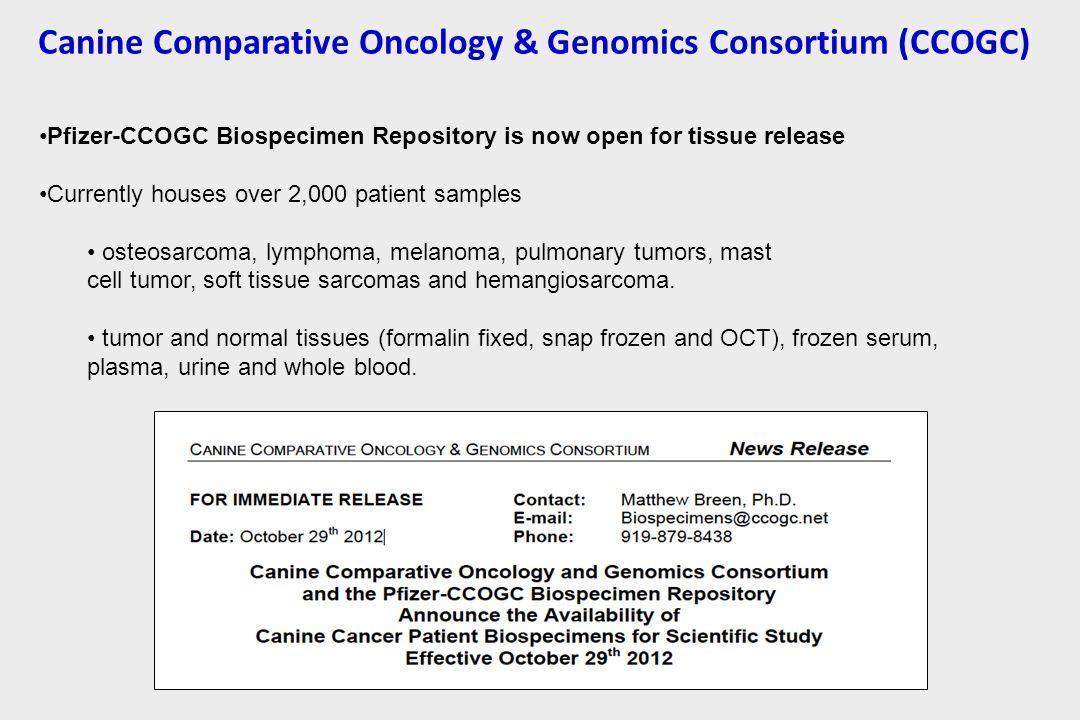 Canine Comparative Oncology & Genomics Consortium (CCOGC)