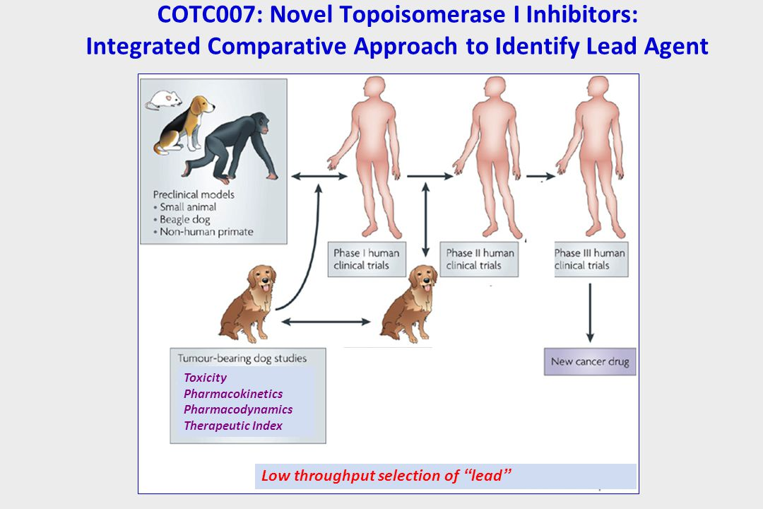 COTC007: Novel Topoisomerase I Inhibitors: Integrated Comparative Approach to Identify Lead Agent