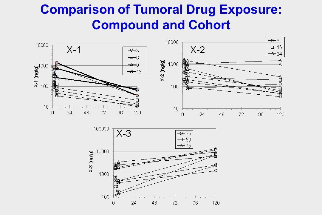 Comparison of Tumoral Drug Exposure: