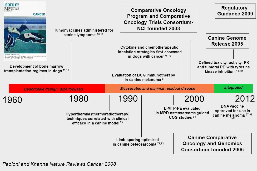 1960 1980 1990 2000 2012 Regulatory Comparative Oncology Guidance 2009