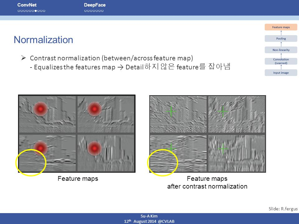 Feature maps after contrast normalization