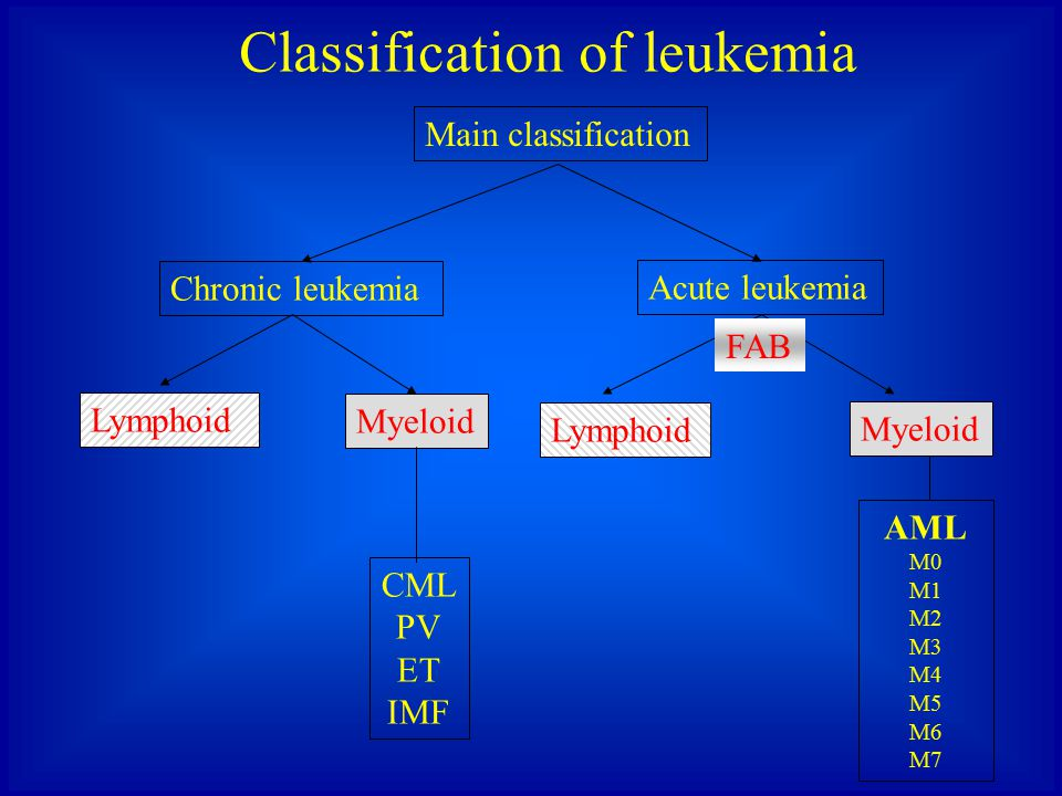 Classification of leukemia