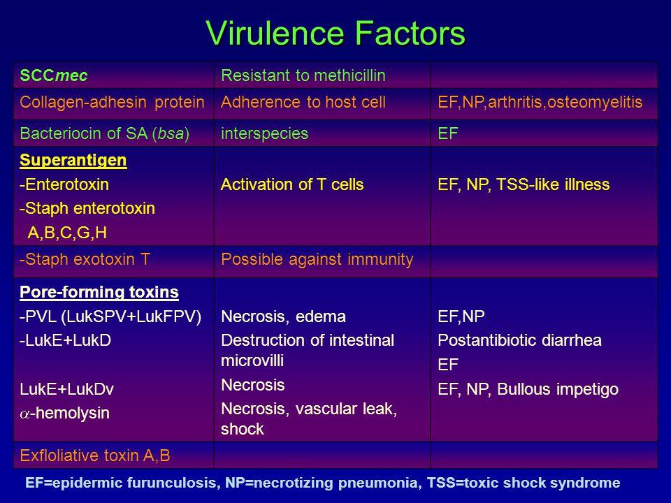 Virulence Factors SCCmec Resistant to methicillin