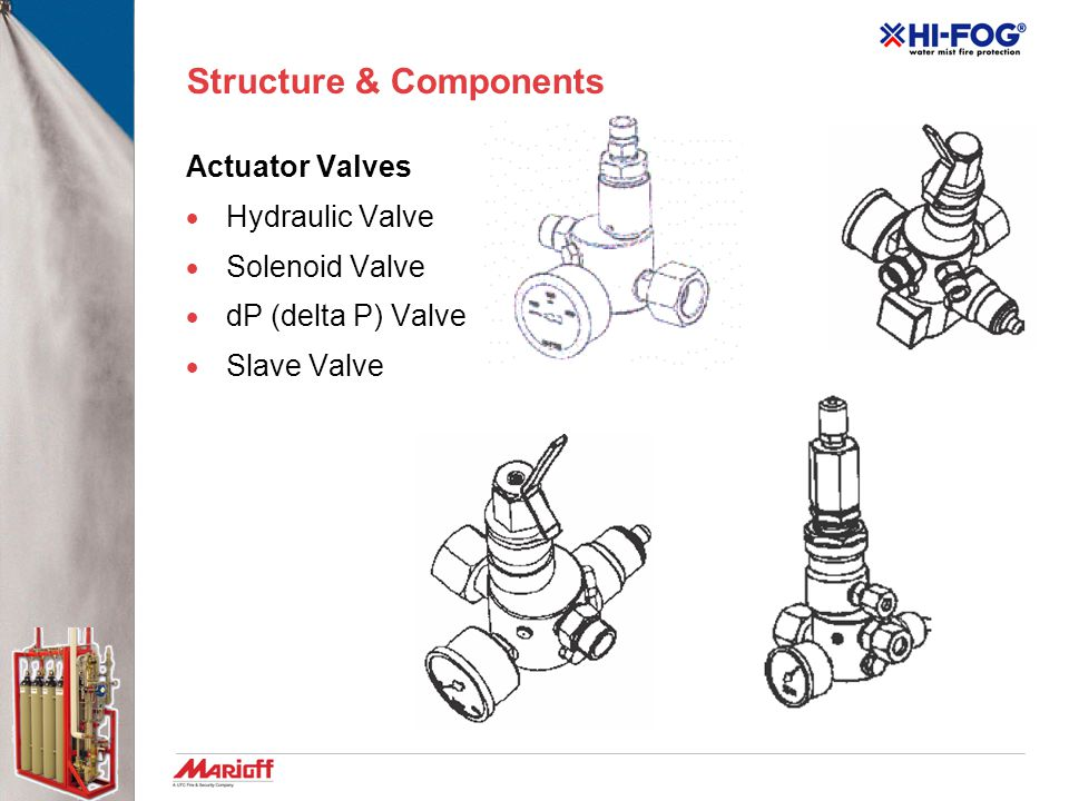 Structure & Components