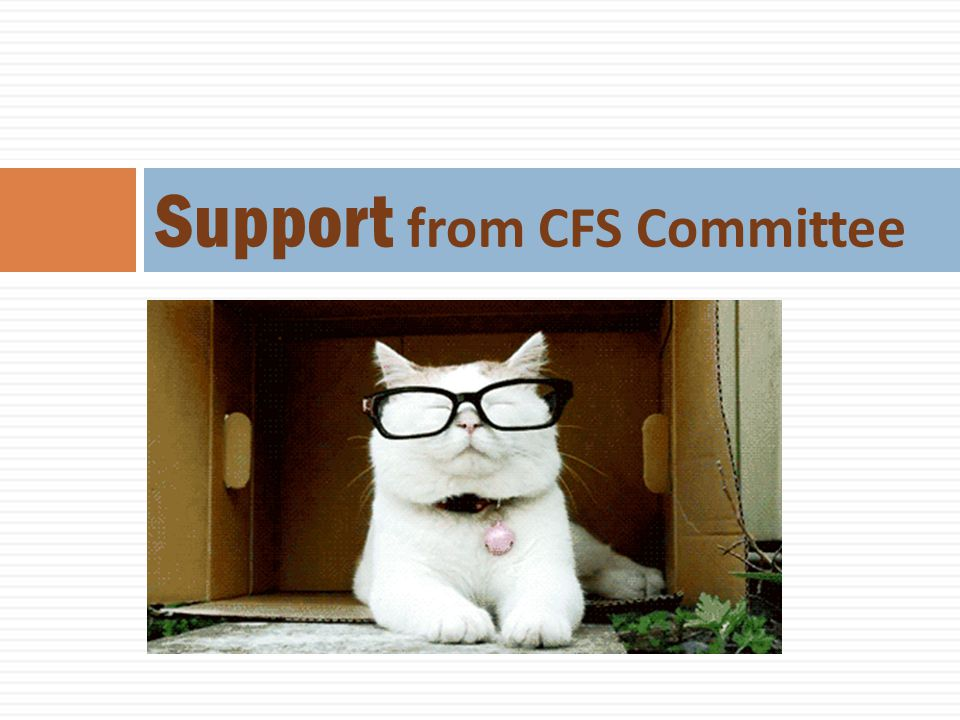 Support from CFS Committee