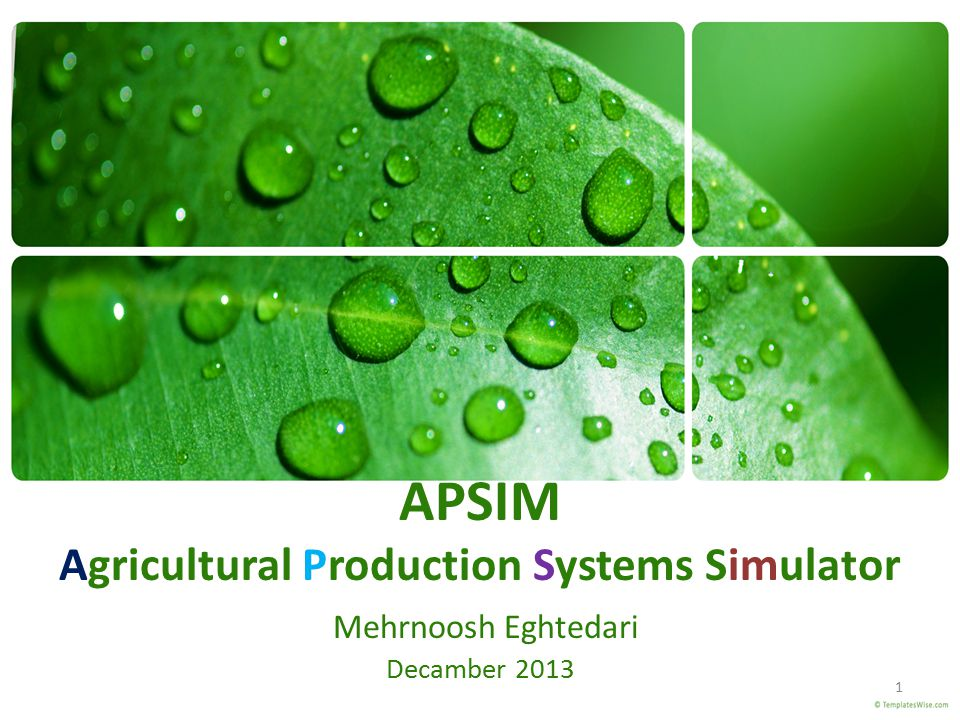 APSIM Agricultural Production Systems Simulator Mehrnoosh Eghtedari Decamber 2013