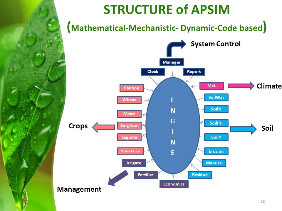 STRUCTURE of APSIM (Mathematical-Mechanistic- Dynamic-Code based)