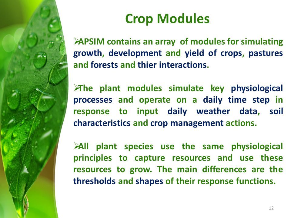 Crop Modules APSIM contains an array of modules for simulating growth, development and yield of crops, pastures and forests and thier interactions.