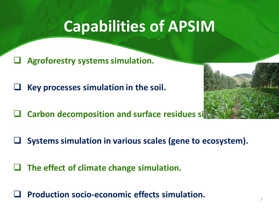 Capabilities of APSIM Agroforestry systems simulation.