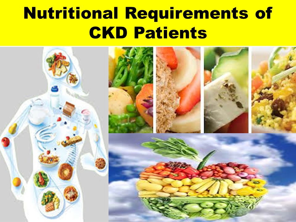 Nutritional Requirements of CKD Patients