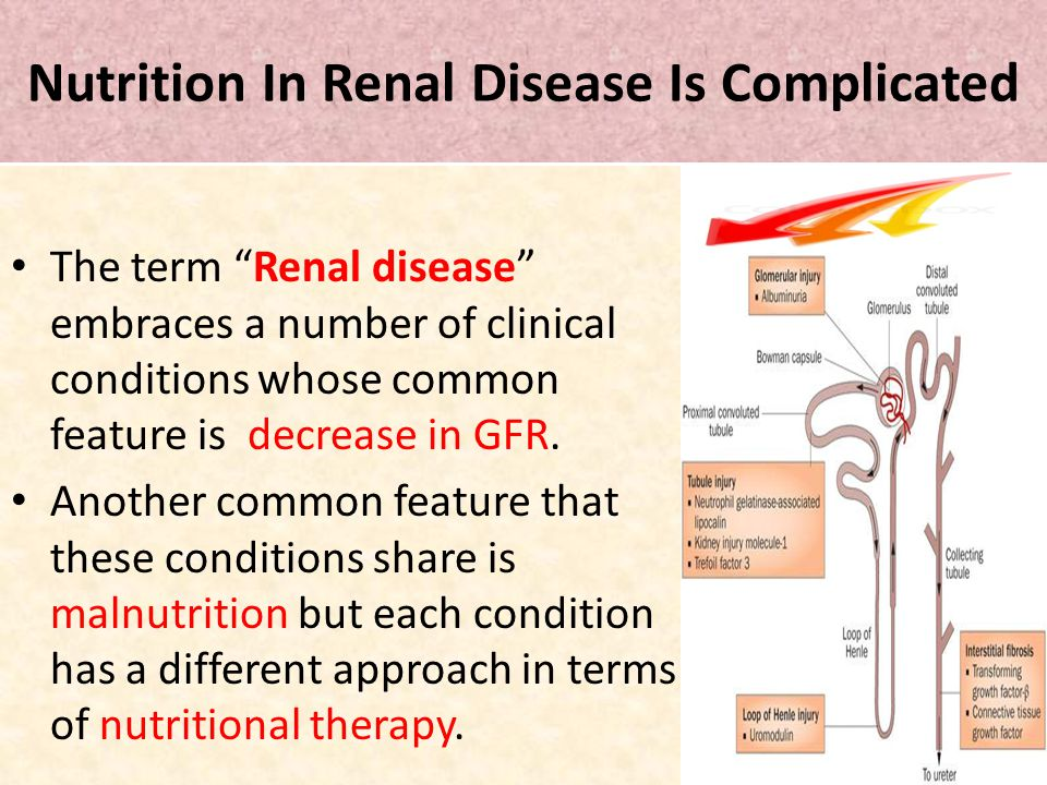 Nutrition In Renal Disease Is Complicated