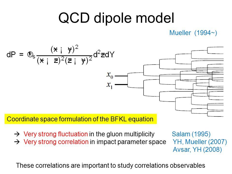 QCD dipole model Mueller (1994~)