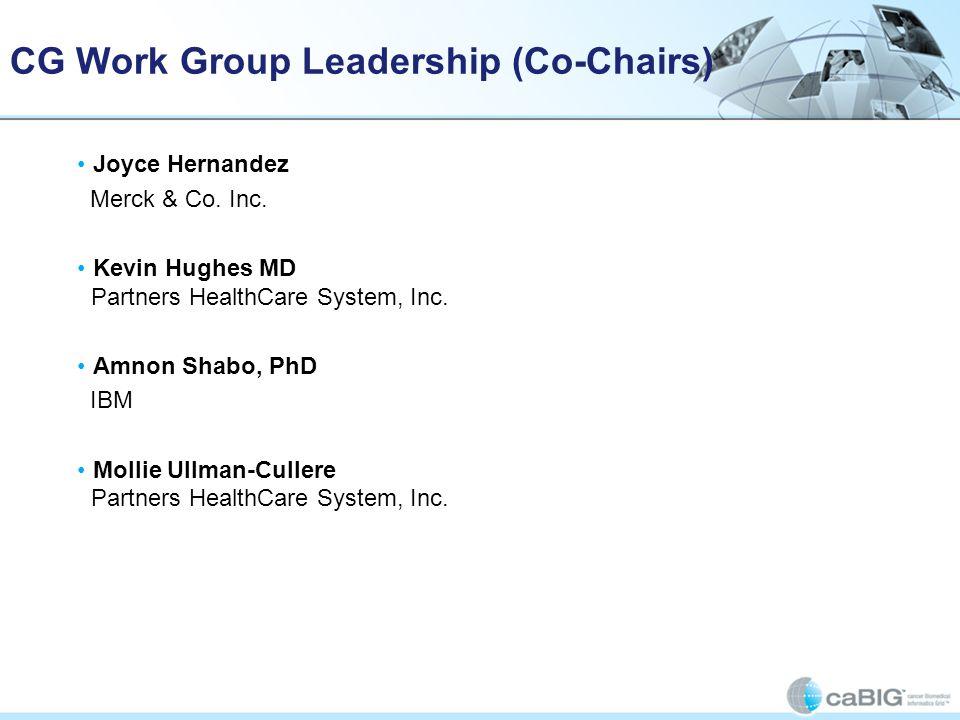 CG Work Group Leadership (Co-Chairs)