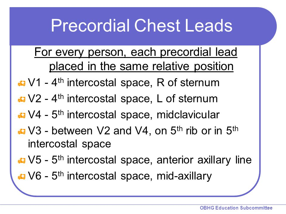 Precordial Chest Leads