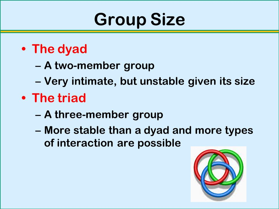 Group Size The dyad The triad A two-member group