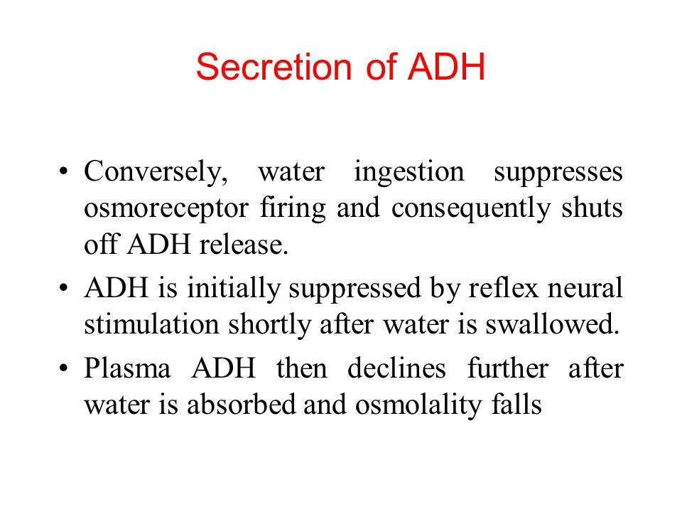 Secretion of ADH Conversely, water ingestion suppresses osmoreceptor firing and consequently shuts off ADH release.