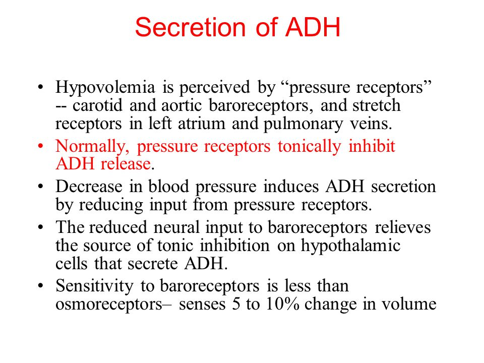 Secretion of ADH