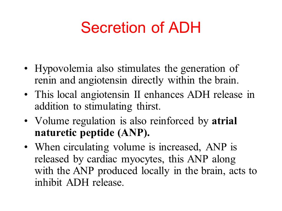 Secretion of ADH Hypovolemia also stimulates the generation of renin and angiotensin directly within the brain.