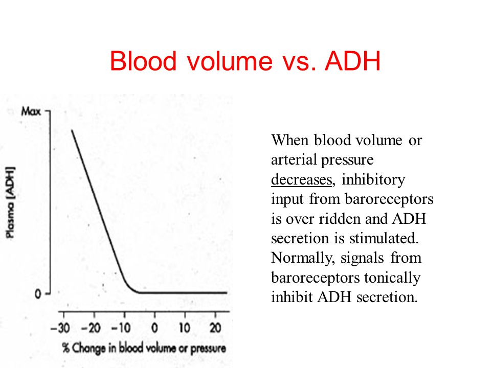 Blood volume vs. ADH