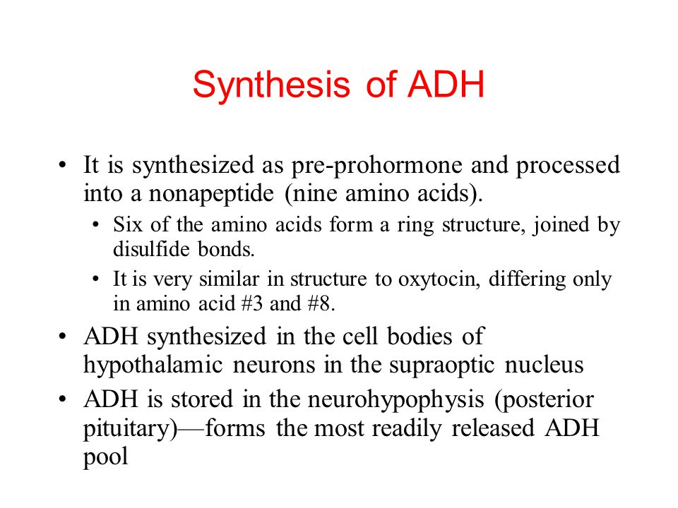Synthesis of ADH It is synthesized as pre-prohormone and processed into a nonapeptide (nine amino acids).