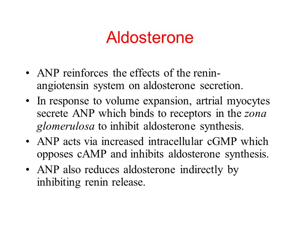 Aldosterone ANP reinforces the effects of the renin-angiotensin system on aldosterone secretion.