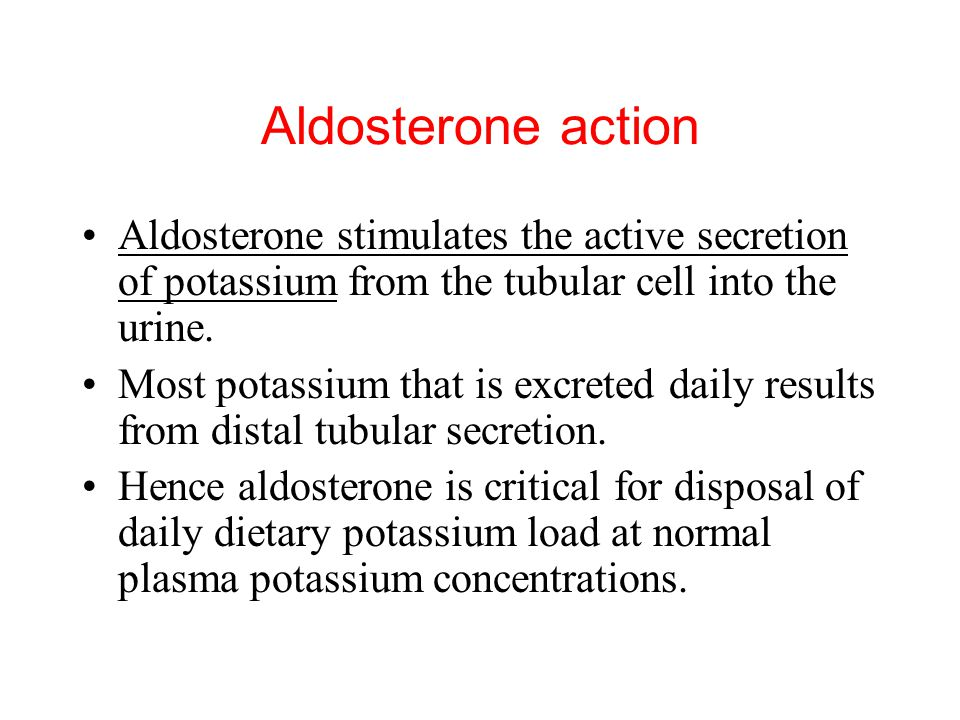 Aldosterone action Aldosterone stimulates the active secretion of potassium from the tubular cell into the urine.