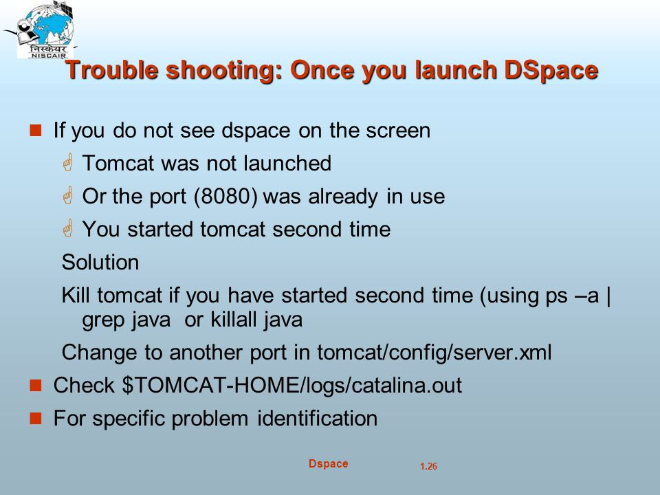 Trouble shooting: Once you launch DSpace