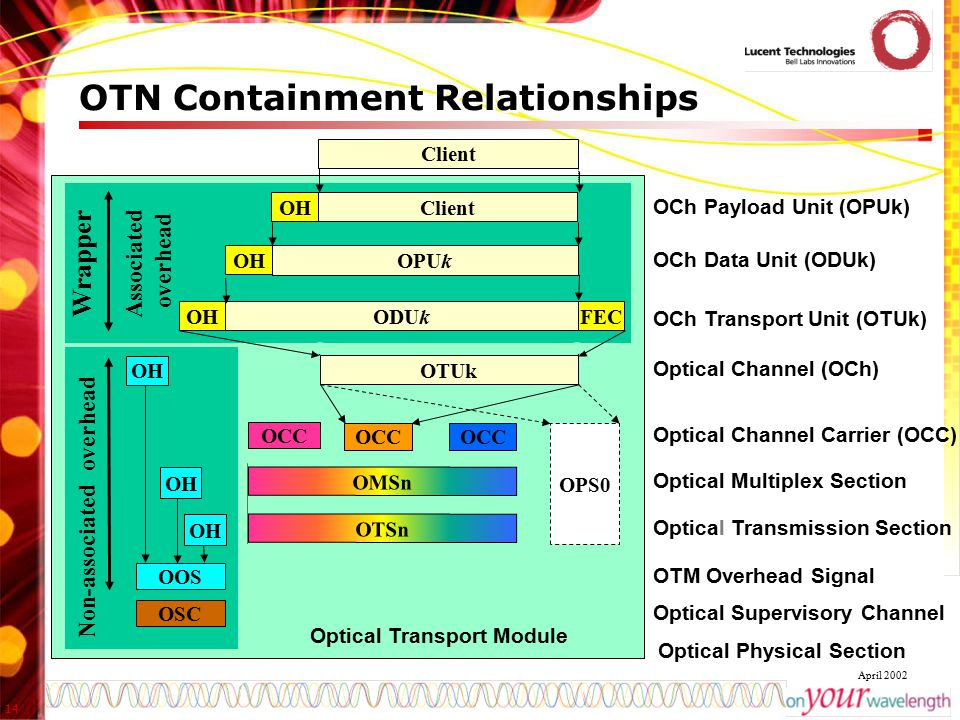 OTN Containment Relationships