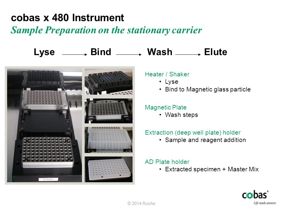 cobas x 480 Instrument Sample Preparation on the stationary carrier