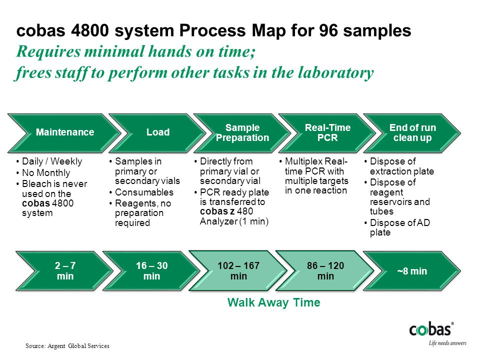 cobas 4800 system Process Map for 96 samples Requires minimal hands on time; frees staff to perform other tasks in the laboratory