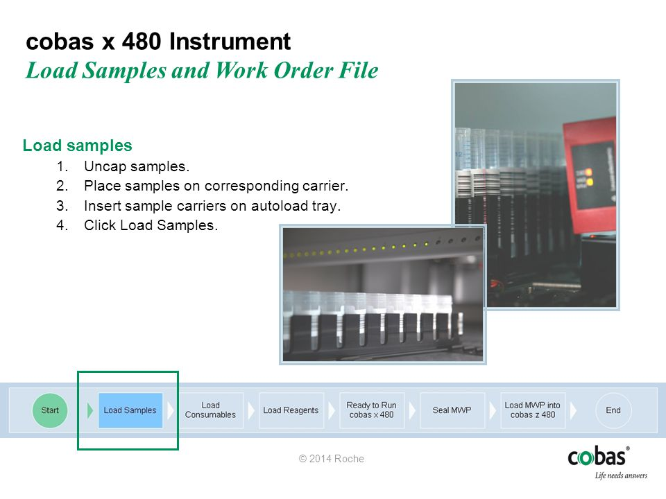 cobas x 480 Instrument Load Samples and Work Order File