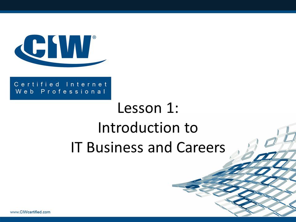 Lesson 1: Introduction to IT Business and Careers