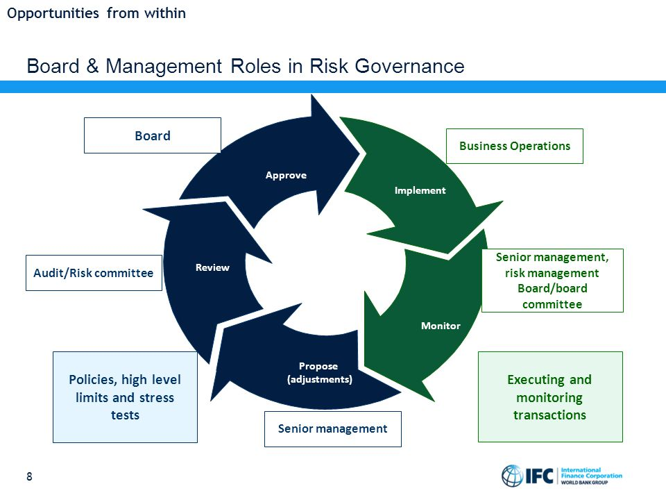Board & Management Roles in Risk Governance