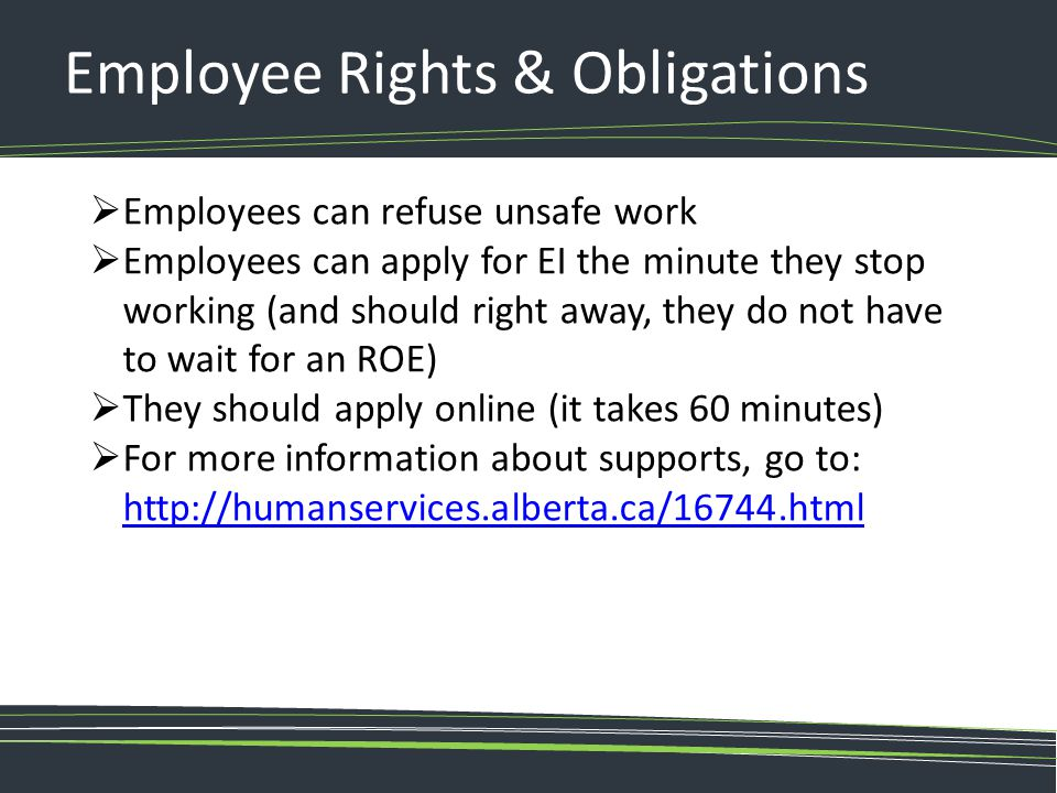 Employee Rights & Obligations