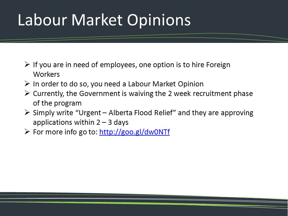 Labour Market Opinions