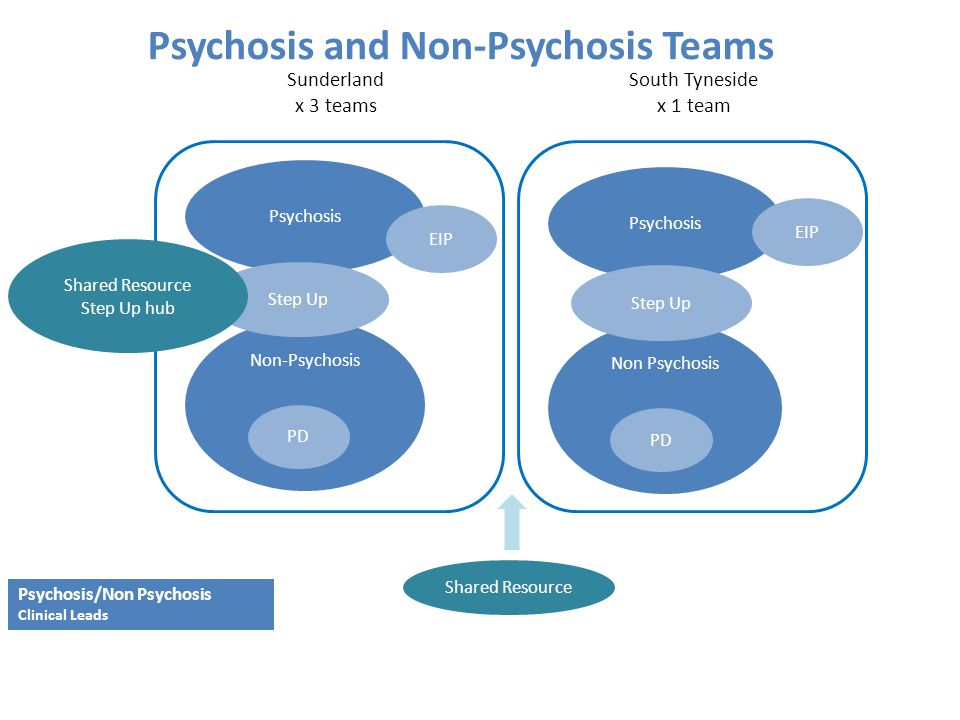Psychosis and Non-Psychosis Teams