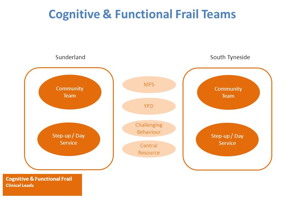 Cognitive & Functional Frail Teams