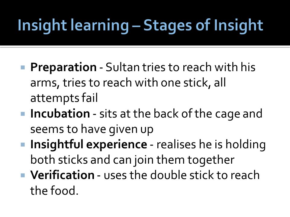 Insight learning – Stages of Insight