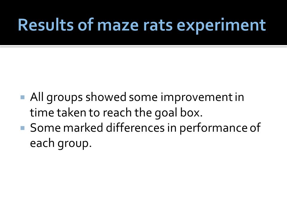 Results of maze rats experiment