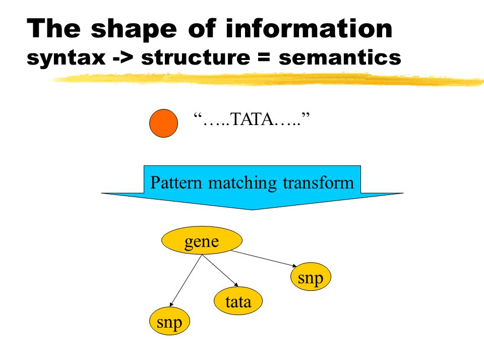 The shape of information syntax -> structure = semantics