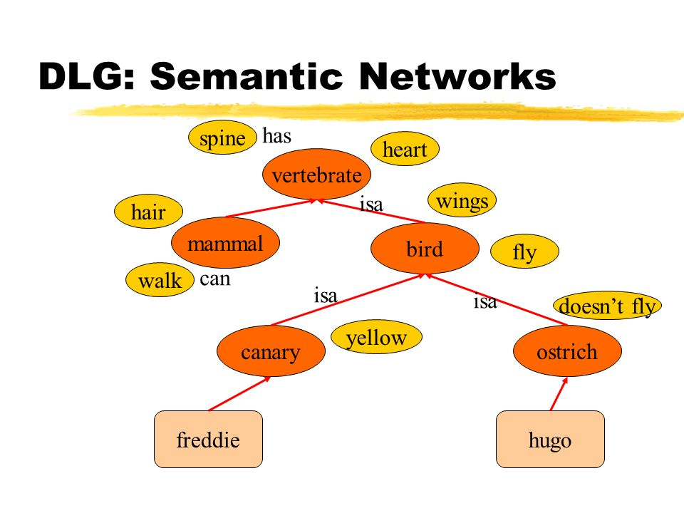 DLG: Semantic Networks
